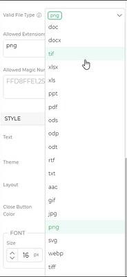 valid file type